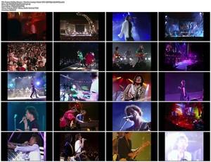Rolling Stones - Voodoo Lounge Uncut 1994 (2018) [BDRip 1080p]