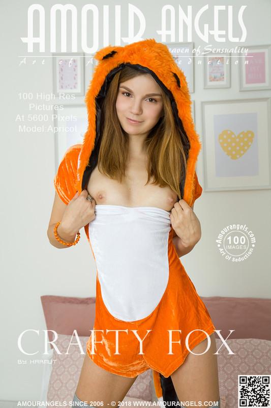 Apricot - Crafty Fox (x100)