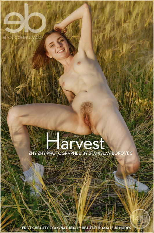 Zhy Zhy - Harvest - 60 pictures - 4500px (15 Dec, 2018)