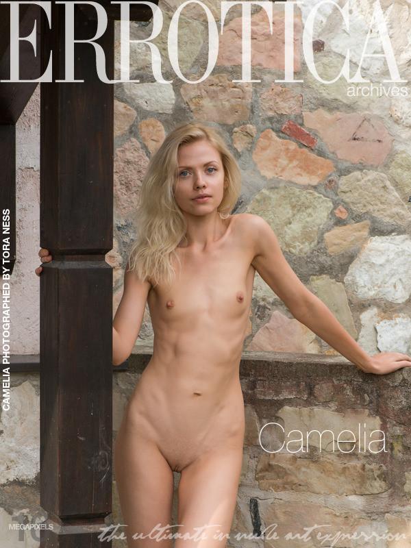 Camelia - Camelia (15-12-2018)