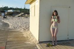 Stella-Cox-Beach-Access-j6tdawnixx.jpg