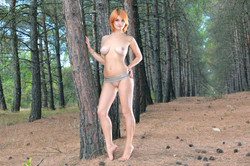 -Violla-A-The-Pines-126-pictures-5616px-m6uxiomr4m.jpg