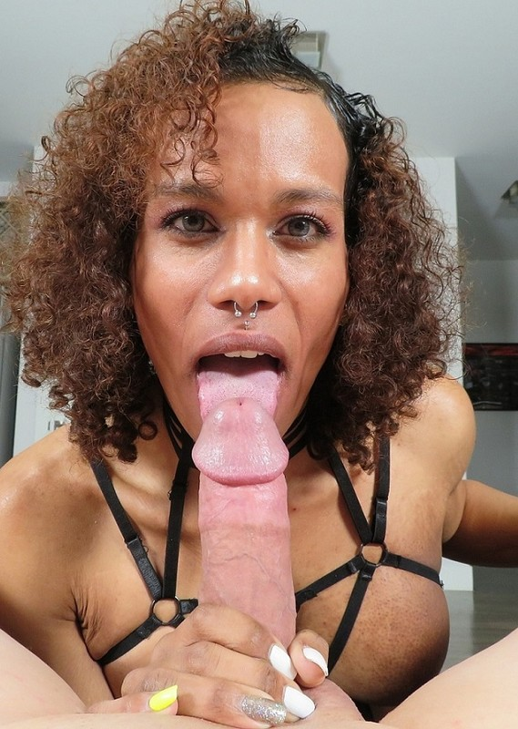 Pink Ivy Exotic Trans Latina Gets Glazed (21 February 2019)