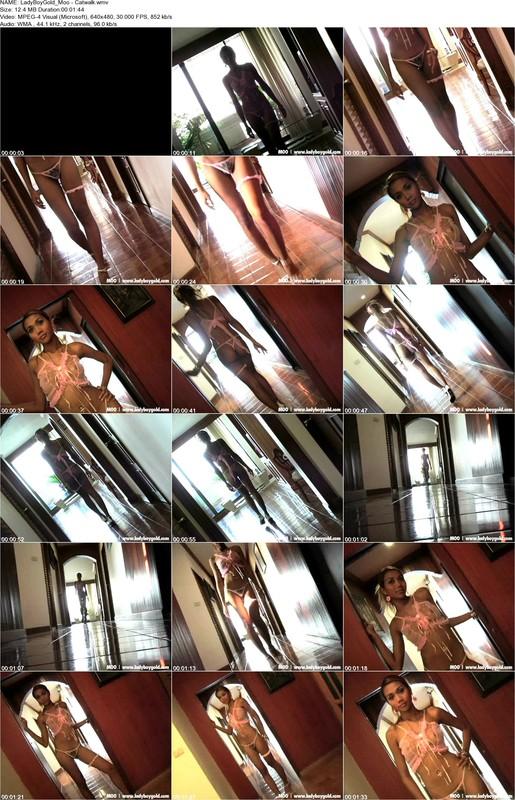 LadyBoyGold_Moo_-_Catwalk.wmv.jpg