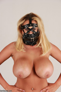 Katie Thornton - New Harness Muzzle